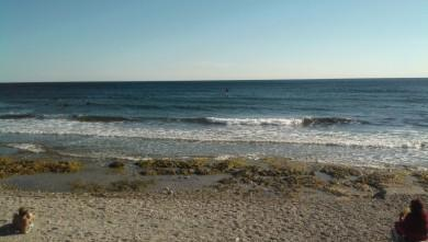 wave report FR, Sausset les Pins - Plage du Port (13) du 2013-09-11 17:00:00