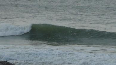 Surf report FR, Mimizan - Plage Garluche (40) du 2013-11-16 13:00:00