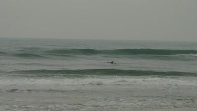 Surf report FR, Mimizan - Plage Garluche (40) du 2013-11-17 15:00:00