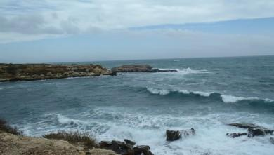 wave report FR, L'Arquet (13) du 2014-02-15 14:40:00