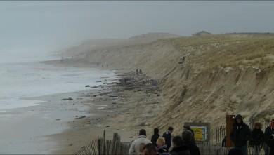 wave report FR, Lacanau Océan - La Nord (33) du 2014-03-02 15:00:00