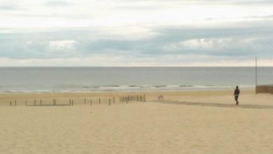 Surf report FR, Vieux Boucau (40) du 2014-08-22 10:30:00