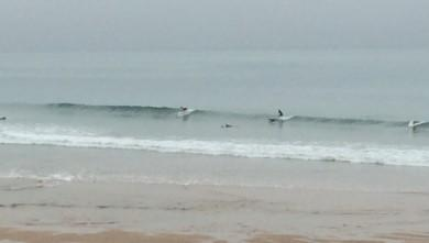 Surf report FR, Côte des Basques (64) du 2014-09-22 09:45:00