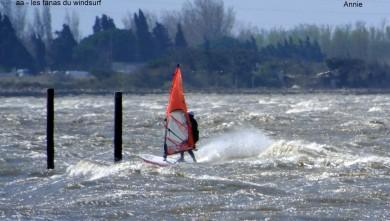 wind report FR, Le Barcarès - Cap Coudalère  (66) du 2014-03-16 12:00:00