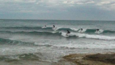 Surf report FR, Carro (13)
