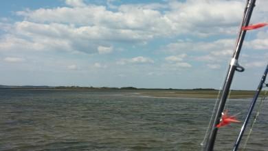Wind report FR, île aux Oiseaux (33) du 2014-06-16 17:00:00