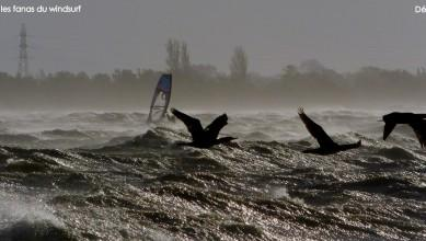 Wind report FR, Le Barcarès - Cap Coudalère  (66) du 2014-12-09 12:00:00