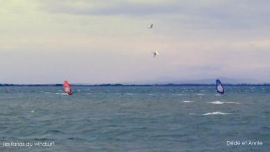 Wind report FR, Le Barcarès - Cap Coudalère  (66) du 2014-12-15 12:00:00