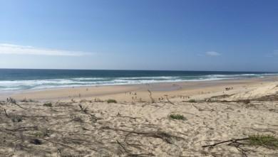 wave report FR, Biscarrosse Plage (40) du 2015-07-11 17:51:00