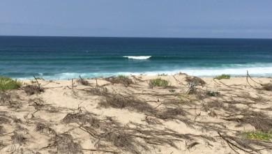 wave report FR, Biscarrosse Plage (40) du 2015-07-13 14:00:00