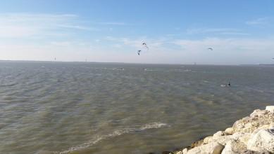 Wind report FR, La Palmyre - Bonne-Anse (17)