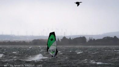 Wind report FR, Le Barcarès - Cap Coudalère  (66) du 2016-01-15 18:00:00