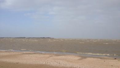 Wind report FR, Aytré - Anse Gaudechaud (17)