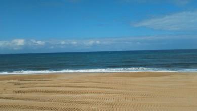 Surf report FR, Capbreton - La Centrale (40) du 2016-04-06 13:00:00