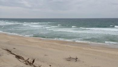 surf/carcans-ocean-wind-report-15820.html