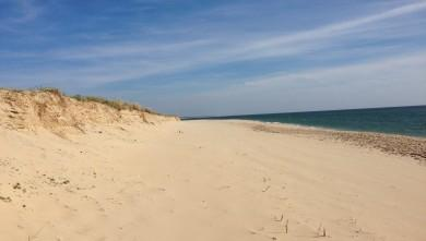 surf/cap-ferret-plage-de-l-horizon-wind-report-15910.html