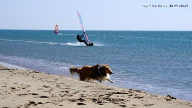 Wind report FR, Leucate - Les Coussoules (11) du 2016-07-25 15:00:00