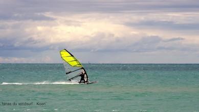 Wind report FR, Leucate - Les Coussoules (11) du 2016-11-11 18:00:00
