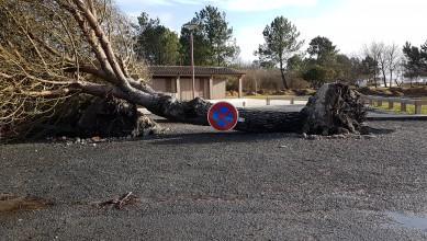 Wind report FR, Hourtin Océan - La Centrale (33)