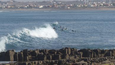 wave report MA, La Bobine (MA)