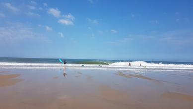 surf/hossegor-la-graviere-wave-report-17875.html