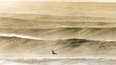 wave report MA, Dahomey (MA) du 2018-10-17 14:00:00