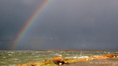 Wind report FR, Le Barcarès - Cap Coudalère  (66) du 2019-01-23 16:00:00