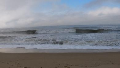 Surf report FR, La Blanche (85) du 2019-02-19 17:00:00