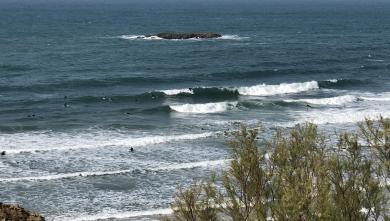 Surf report FR, Biarritz - Grande Plage (64) posté par axel le 2021-04-03 17:00:00