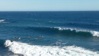 Surf report FR, L'Arquet (13)
