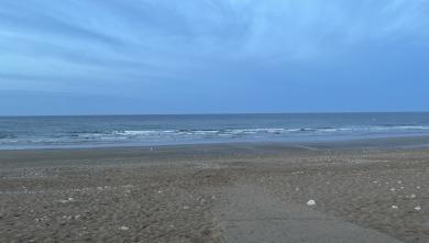 Surf report FR, Gros Jonc (17) du 2021-09-14 08:00:00